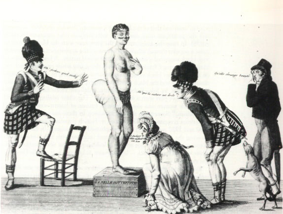 L'histoire de la Vénus Hottentote