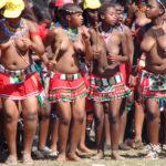 Photos indécentes lors de la danse du roseau selon le roi Goodwill Zwelithini