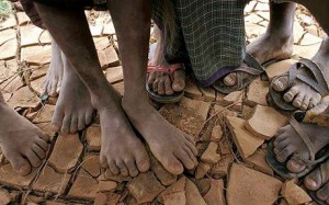Dans la majeure partie de la Somalie, les pluies n'ont atteint que 0 à 15% du niveau habituel de pluviométrie
