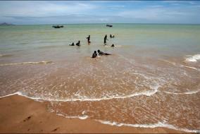 Situé entre le tropique du Capricorne et l'équateur, l'Angola est le pays le plus étendu au Sud du Sahara.