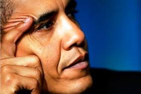 Fils d'un Kényan noir et d'une Américaine blanche du Kansas de souche irlandaise, Barack Obama est le premier Afro-Américain ayant accédé à la présidence des États-Unis. Son parcours a suscité chez les électeurs comme dans les médias du monde entier un grand intérêt.