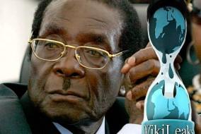 Quand Robert Mugabe arrive au pouvoir le 31 décembre 1987, 70% des terres arables appartenaient à 4000 fermiers blancs. Le 6 avril 2000, il impose sa réforme agraire malgré la défaveur du peuple. La plupart des fermiers blancs sont expropriés et une dizaine sont assassinés. Depuis lors, la plupart fuient à l'étranger.