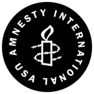 Le professeur de droit international de l'Université de l'Illinois, Francis Boyle, qui a été membre du conseil d'Amnesty International U.S.A. à la fin des années 1980 et début 1990, affirme que l'ONG qui a vue le jour en 1966, agi de manière étroitement liée aux intérêts des États-Unis et du Royaume-Uni dans sa politique étrangère à cause du financement important des États-Unis qu'il estime à 20 %