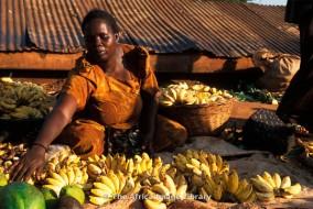 En termes de valeur de production, les bananes et les bananes plantain se situent au quatrième rang des plantes alimentaires d'importance au niveau mondial. Les bananes exportées sont placées au quatrième rang des produits de base au niveau mondial et au troisième rang en tant que fruit (derrière l'orange et le raisin).