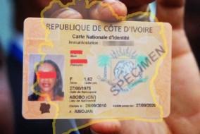 Selon certaines thèses, la crise ivoirienne est la résultante à la fois d'un colonialisme déstructurant pour l'organisation traditionnelle, d'un imbroglio juridique créé par la Constitution ivoirienne, des pratiques antidémocratiques du parti unique et du concept de l'ivoirité