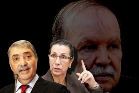 Le 22 mars, environ 5 000 personnes se sont rassemblés à Alger pour un boycotter le scrutin en raison de la candidature de Bouteflika qui brigue un 4e mandat faisait fit de la constitution. Les partis islamistes et laïques étaient présents. Mohsen Belabes du Rassemblement pour la culture et la démocratie : « Les gens d'ici sont les gens qui ont été exclus, qui ont été mis de côté, mais c'est la vraie Algérie. Le régime va s'effondrer, mais l'Algérie survivra. »
