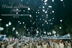 La seconde édition du Dîner en Blanc® d'Haïti