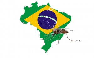 Le Brésil est le plus grand État d'Amérique latine. Depuis 2000, 7 millions de cas de dengue y ont été rapportés. Au cours de cette année, au moins 230 personnes y ont succombé et durant les cinq dernières années l'infection a fait plus de 800 morts.