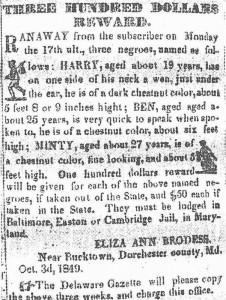 """Avis de recherche offrant 300$ pour retrouver """"Minty"""" (Harriet Tubman) ainsi que ses deux frères Ben et Harry"""