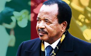 De nombreuses organisations, telle qu'Amnesty International, ont critiqué le régime de Paul Biya, accusé de restreindre les libertés fondamentales des Camerounais et de commettre des violations des droits de l'homme