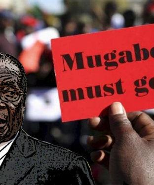 Plusieurs critiques condamnent Robert Mugabe d'être un raciste antiblanc pour avoir lancé des phrases comme celles-ci: « L'homme blanc est ici comme le second citoyen : vous êtes en numéro un. Il est numéro deux ou trois. C'est ce qui doit être enseigné à nos enfants. » et « Notre parti doit continuer de faire entrer la peur dans le cœur de l'homme blanc, notre véritable ennemi. »